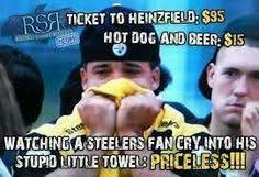 Pittsburgh Steelers Suck Memes - so true i hate the steelers sports pinterest ravens