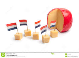 dutch edam cheese with cubes royalty free stock photo image
