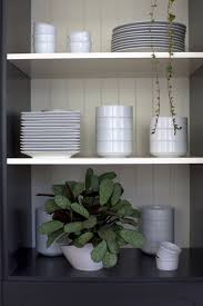 best houseplants 9 indoor plants for low light gardenista