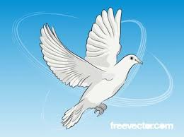 peace dove flying sketch illustration vector free download