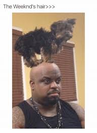 The Weeknd Memes - 25 best memes about the weeknd hair the weeknd hair memes