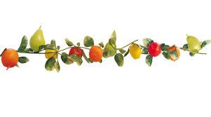 sukkah decorations assorted fruit garland sukkah decoration