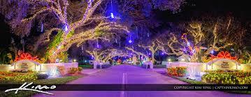 palm harbor christmas lights snug harbor christmas lights 2016 palm beach county florida royal