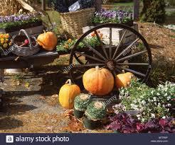 top 10 u s halloween events keene pumpkin festival guinness