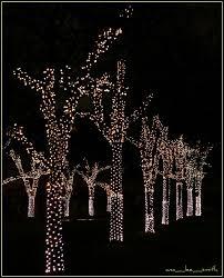 Singing Christmas Tree Lights 74 Best Outdoor Christmas Lights Images On Pinterest Outdoor