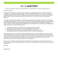 resume for sales and marketing resume sample marketing manager click here to download this sales