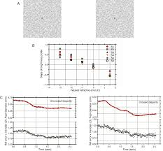 accommodation and pupil responses to random dot stereograms
