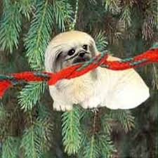 95 best pekingese images on forms lions and