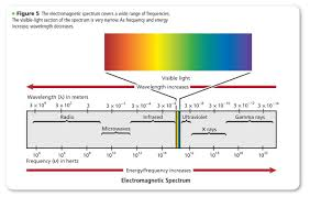 Visible Light Spectrum Wavelength Electromagnetic Radiation And Radio Waves