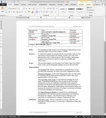 management review template virtren com