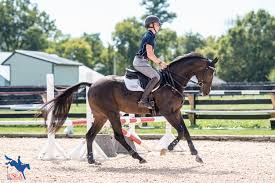 megan easton body usea creating an effective warm up for your young horse with