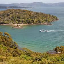 real journeys nz stewart island wild kiwi encounter tour u0026 cruise