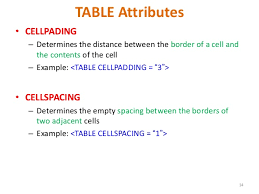 Table Cell Spacing Web Engineering An Overview About Html