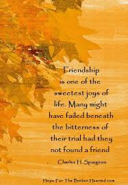 friendship is one of the sweetest joys of grief