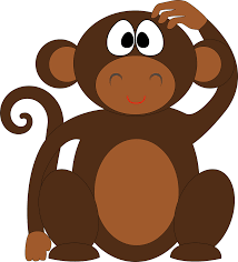 the more monkey the worse the physical therapy physiotherapy
