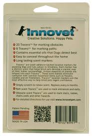 products living with blind dogs
