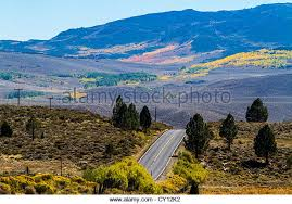 fall aspen virginia lakes stock photos u0026 fall aspen