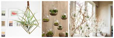 how to hang a plant from the ceiling unac co