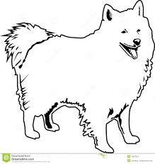 american eskimo dog tattoo american eskimo clipart collection