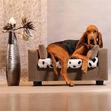 divanetti per gatti tabella delle misure divanetto per cani e gatti armonia