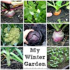 Winter Gardening Ideas Winter Gardening Ideas Image Source Winter Vegetable Gardening