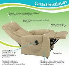 fauteuil relax releveur fauteuil releveur electrique à 2 moteurs