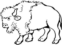bison coloring pages olegandreev me