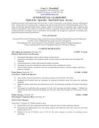 District Manager Resume Sample by Download Salon Manager Resume Haadyaooverbayresort Com