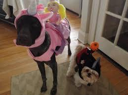 halloween headless horseman costume headless horseman costume for dogs