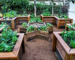 perfect vegetable garden layout home decor beautiful raised bed garden designs green thumb