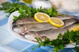 cuisiner l anguille poisson cru à l anguille le persil le sel et le citron