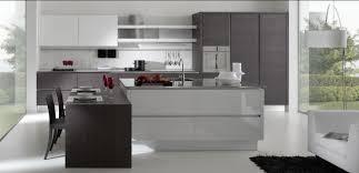 Modern Kitchen Cabinets Modern Kitchen Los Angeles By Euro - California kitchen cabinets