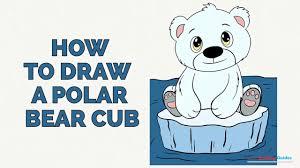 how to draw a polar bear cub in a few easy steps drawing tutorial