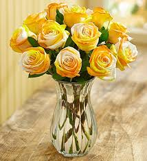 gold roses the meanings of yellow gold roses from roseforlove