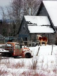 The Health Barn Maine Land What To Look For Buying The Soil Mooers Realty Blog