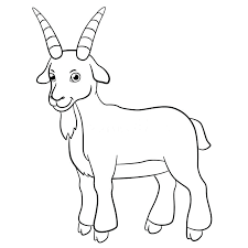 free coloring pages goats coloring pages goat rabbit coloring page coloring page animal
