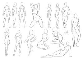 Female Anatomy Video Woman Body Anatomy Video Archives Human Anatomy Chart
