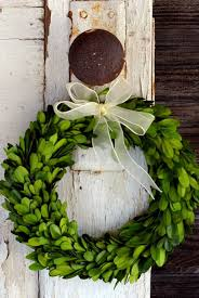 preserved boxwood wreath preserved boxwood wreaths with ribbon