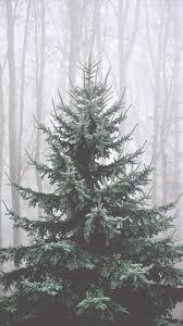 best 25 winter backgrounds ideas on pinterest