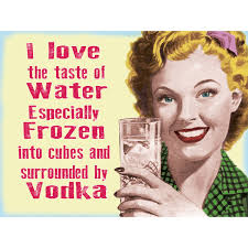 martini bar sign vodka i love the taste of water funny bar sign