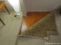 five features of home depot carpet reviews that make