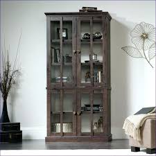 Narrow Depth Storage Cabinet Shallow Depth Storage Cabinets Shallow Storage Cabinet Large Size