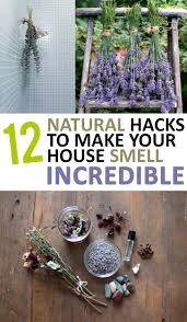 Diy Home Decore 12 Natural Hacks To Make Your House Smell Incredible