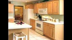 great ideas for small kitchens kitchen great ideas of paint colors for kitchens sage green