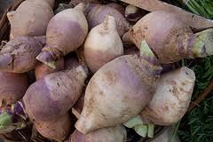 cuisiner crosnes légumes anciens d hiver comment les préparer le crosne le