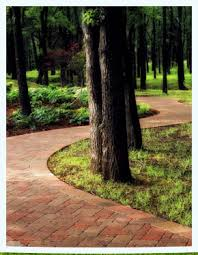 Landscape Syracuse Ny by Lawn Maintenance Lawn Care Landscaping Syracuse Liverpool