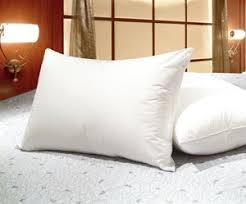 Goose Feather Duvet Sale Amazon Com Set Of 2 Queen Size White Goose Feather And Goose