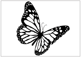 printable fun butterfly coloring pages for kids