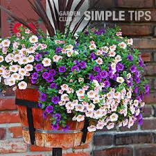 Home Depot Flower Projects - baskets pots u0026 planters the home depot