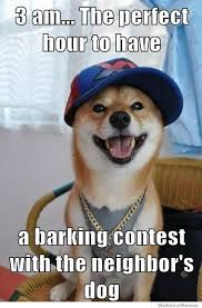 Dog Barking Meme - hilarious dog memes hour to have a barking contest with the